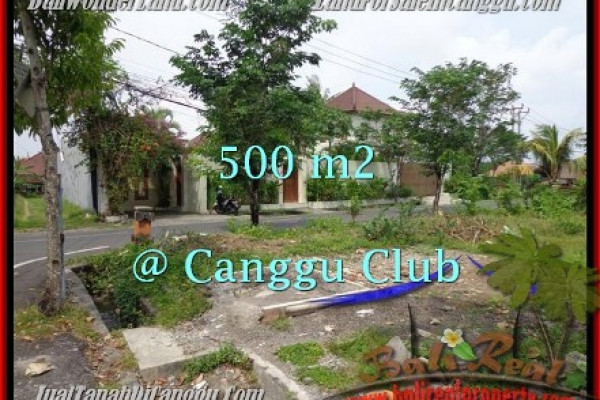 Beautiful PROPERTY 500 m2 LAND SALE IN CANGGU TJCG176
