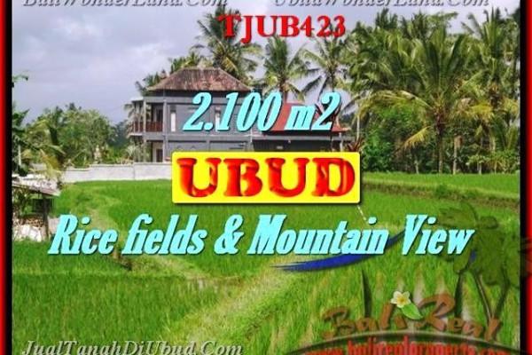 2,100 m2 LAND SALE IN UBUD TJUB423