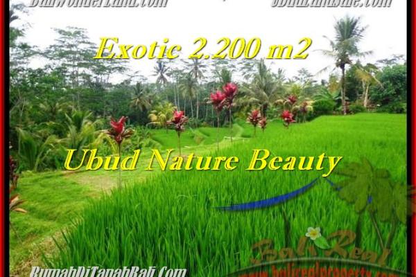 Affordable LAND IN Ubud Tegalalang BALI FOR SALE TJUB480