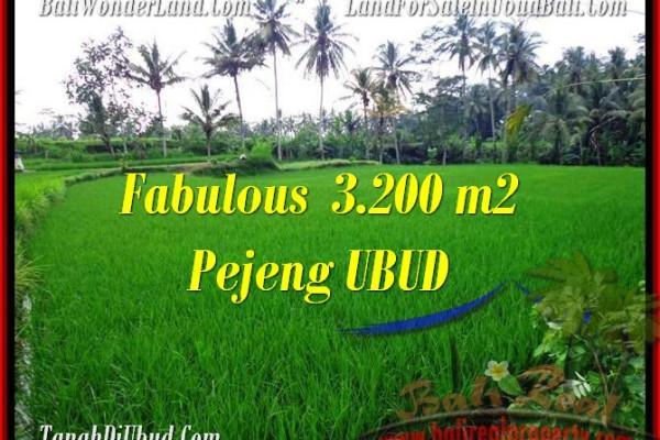FOR SALE Magnificent LAND IN Ubud Pejeng BALI TJUB484