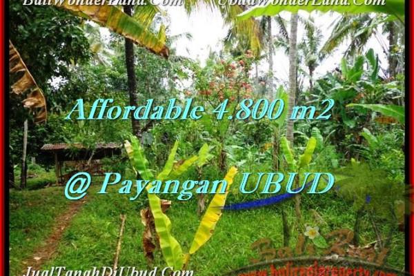 FOR SALE Affordable PROPERTY 4,800 m2 LAND IN UBUD BALI TJUB486