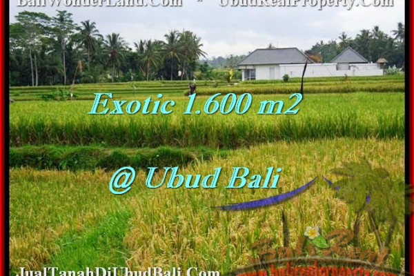 Beautiful PROPERTY LAND SALE IN UBUD TJUB487