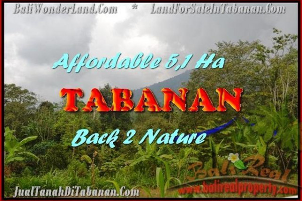 FOR SALE Magnificent PROPERTY 51,100 m2 LAND IN TABANAN BALI TJTB166