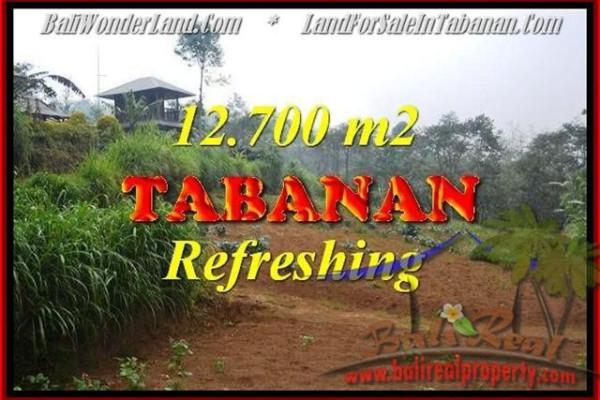 Exotic PROPERTY 12,700 m2 LAND SALE IN TABANAN BALI TJTB167