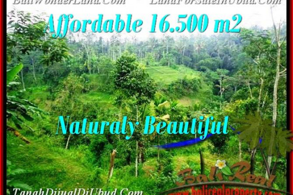 Affordable 16,500 m2 LAND FOR SALE IN UBUD BALI TJUB494