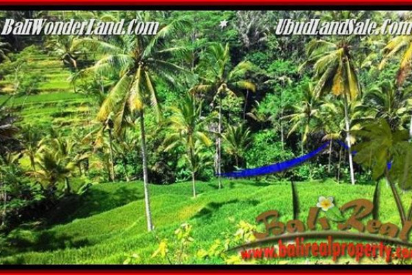 FOR SALE Exotic 2,500 m2 LAND IN UBUD TJUB496