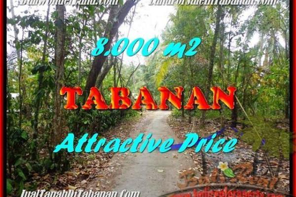 Affordable LAND SALE IN Tabanan Selemadeg BALI TJTB161