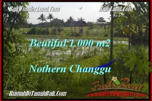 Beautiful Canggu Batu Bolong  LAND FOR SALE TJCG180