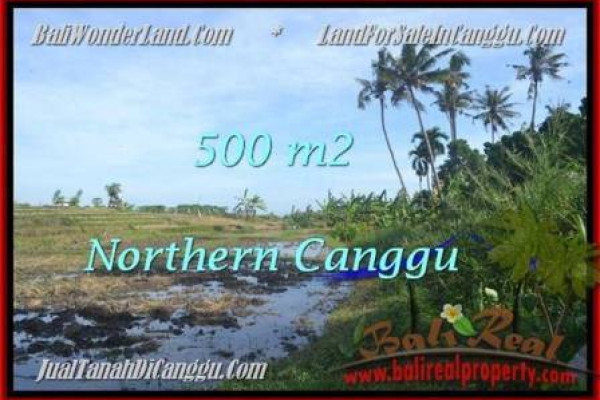 Beautiful PROPERTY LAND IN Canggu Pererenan BALI FOR SALE TJCG181