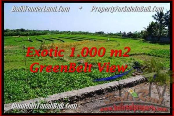 FOR SALE Exotic 1,000 m2 LAND IN Canggu Pererenan BALI TJCG184