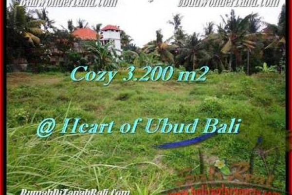 FOR SALE Magnificent PROPERTY 3,200 m2 LAND IN UBUD BALI TJUB510