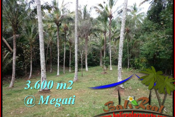 Beautiful 3,600 m2 LAND SALE IN TABANAN BALI TJTB211