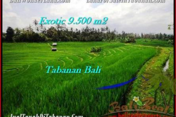Affordable 9,500 m2 LAND FOR SALE IN TABANAN BALI TJTB210