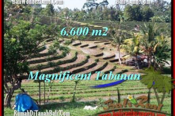 Exotic LAND SALE IN Tabanan Selemadeg BALI TJTB204