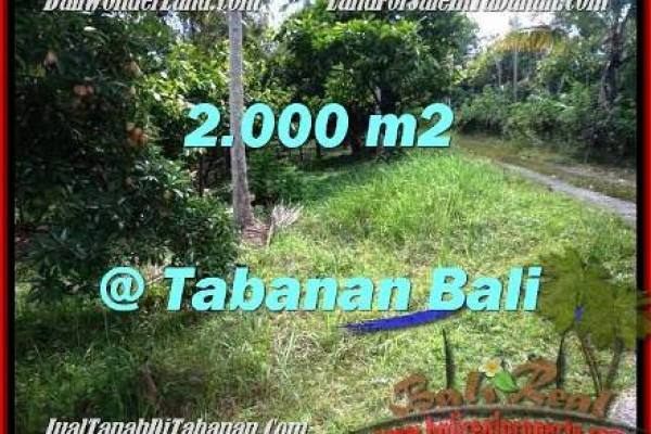 Affordable PROPERTY LAND FOR SALE IN TABANAN TJTB206