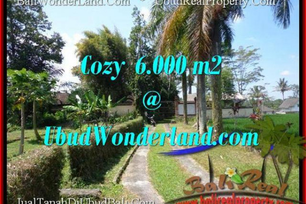 Beautiful PROPERTY Sentral Ubud 6,000 m2 LAND FOR SALE TJUB507