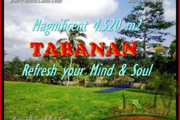 FOR SALE Magnificent PROPERTY 4.520 m2 LAND IN TABANAN BALI TJTB154