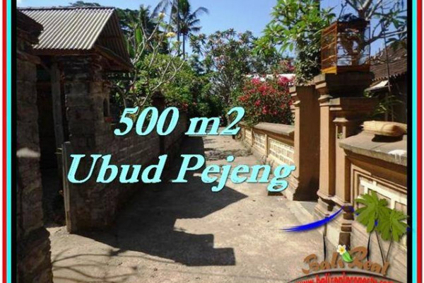 500 m2 LAND FOR SALE IN UBUD BALI TJUB515