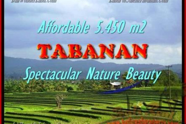 Beautiful 5.450 m2 LAND SALE IN TABANAN BALI TJTB152
