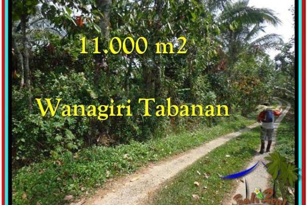 Beautiful 11.000 m2 LAND SALE IN TABANAN BALI TJTB213