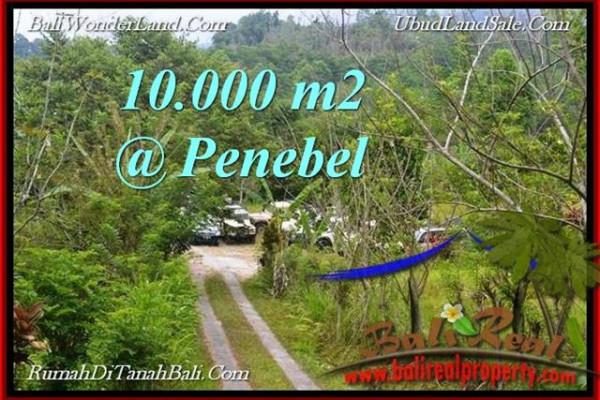 Beautiful LAND FOR SALE IN  TABANAN TJTB214
