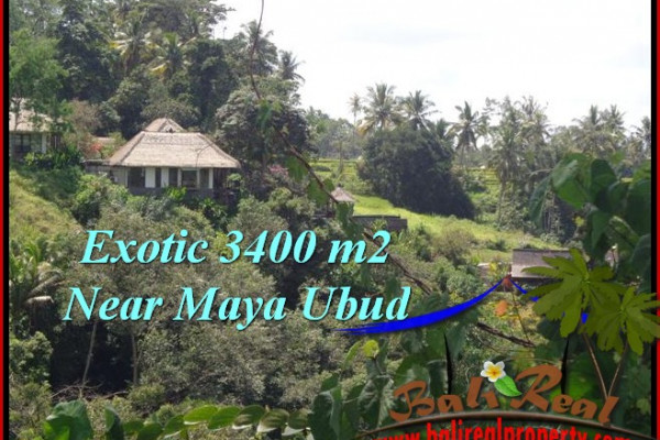 FOR SALE Beautiful PROPERTY LAND IN UBUD TJUB514