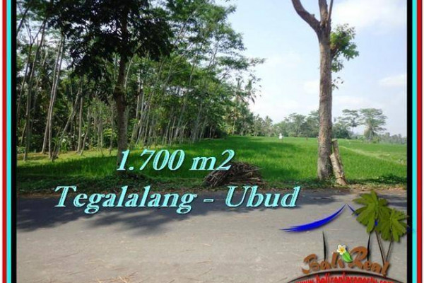 FOR SALE Beautiful 1,700 m2 LAND IN UBUD BALI TJUB518