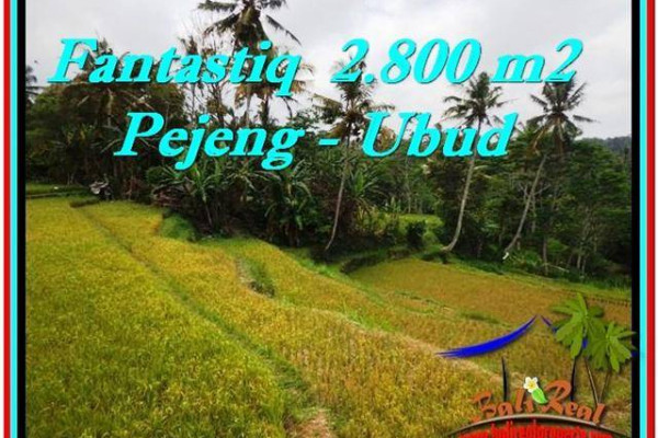Magnificent PROPERTY 2,800 m2 LAND FOR SALE IN Ubud Tampak Siring TJUB521