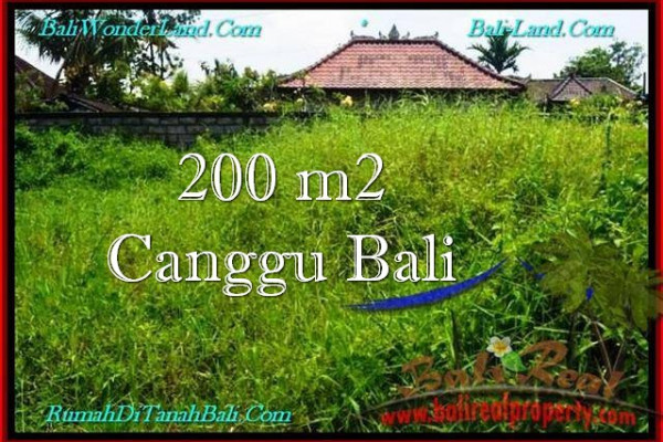 LAND IN Canggu Pererenan FOR SALE TJCG190