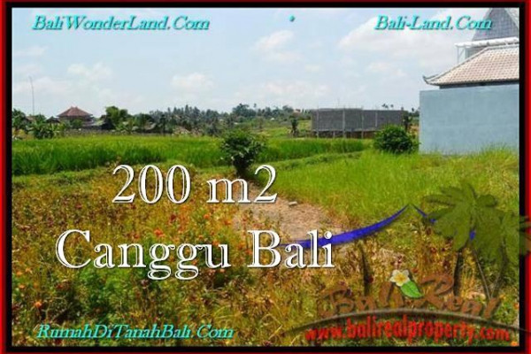 FOR SALE Magnificent LAND IN Canggu Pererenan TJCG191