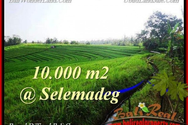 Magnificent PROPERTY LAND SALE IN TABANAN TJTB217