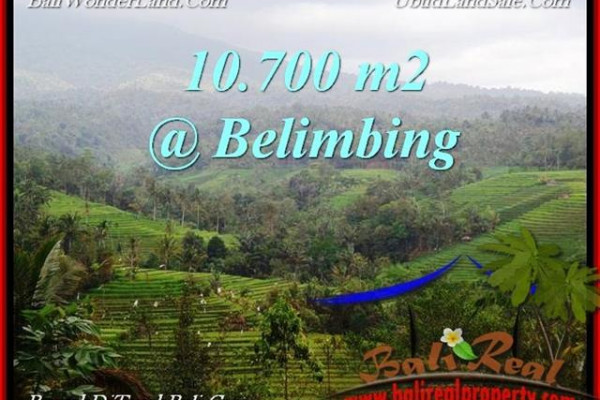 10,700 m2 LAND FOR SALE IN TABANAN BALI TJTB219