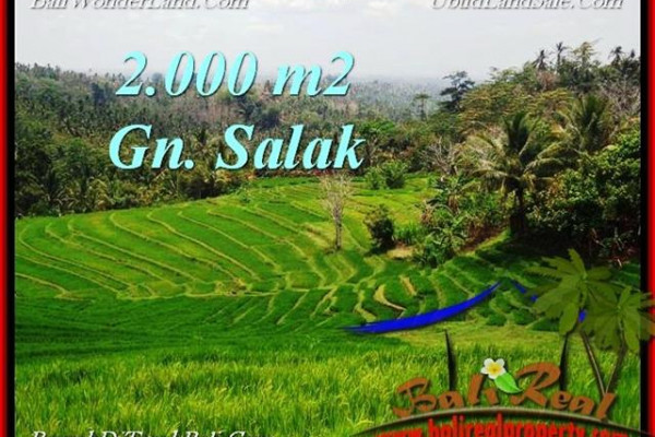 Magnificent 2,000 m2 LAND IN TABANAN BALI FOR SALE TJTB220