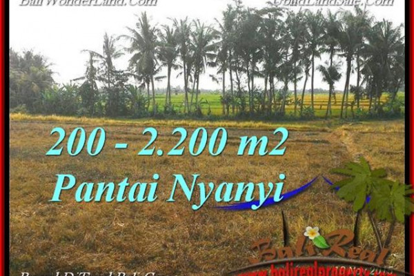 Magnificent 2,200 m2 LAND SALE IN TABANAN BALI TJTB224