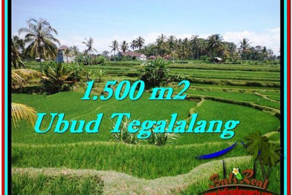 FOR SALE Magnificent PROPERTY LAND IN UBUD TJUB528