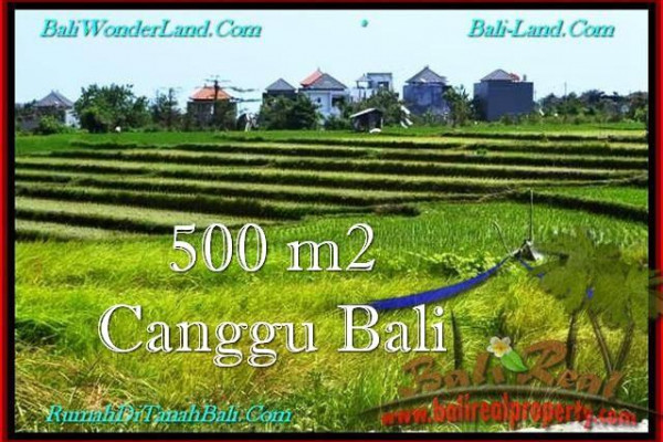 Exotic LAND SALE IN Canggu Brawa TJCG192