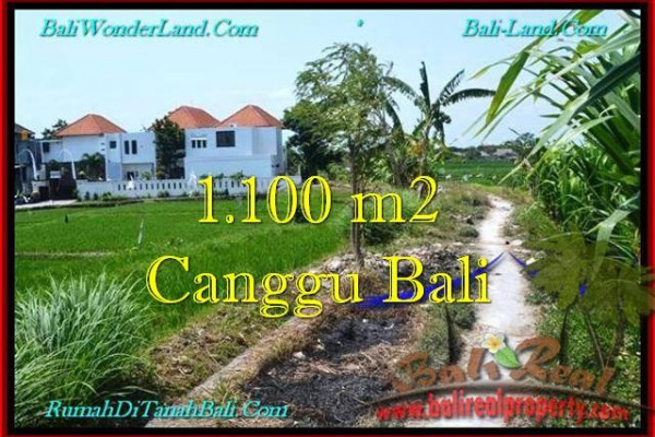 FOR SALE Affordable PROPERTY LAND IN Canggu Brawa TJCG193