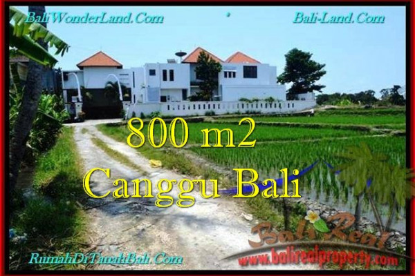 Beautiful LAND FOR SALE IN Canggu Brawa BALI TJCG194