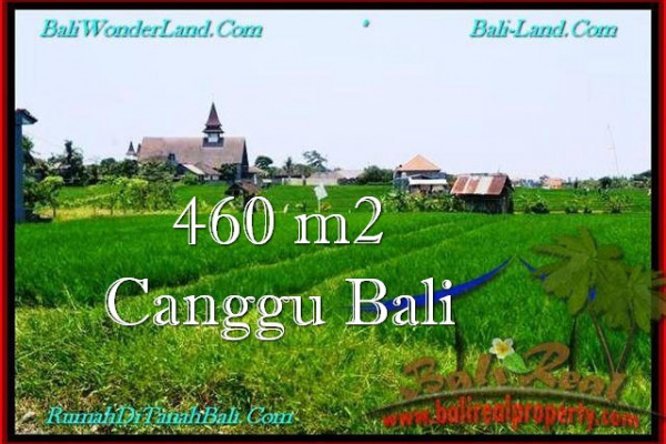Affordable PROPERTY LAND IN Canggu Brawa BALI FOR SALE TJCG195