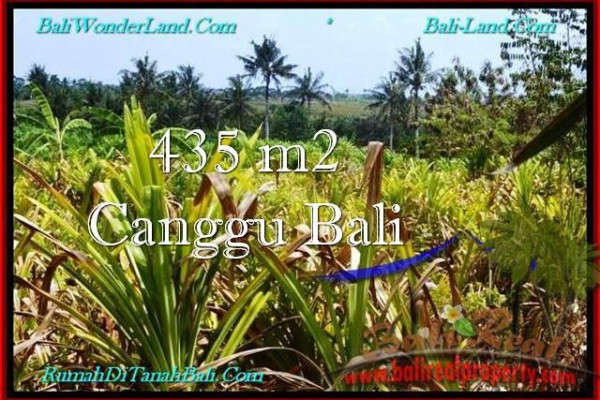 Exotic PROPERTY Canggu Pererenan BALI LAND FOR SALE TJCG196