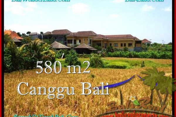 Magnificent PROPERTY LAND SALE IN Canggu Pererenan BALI TJCG197