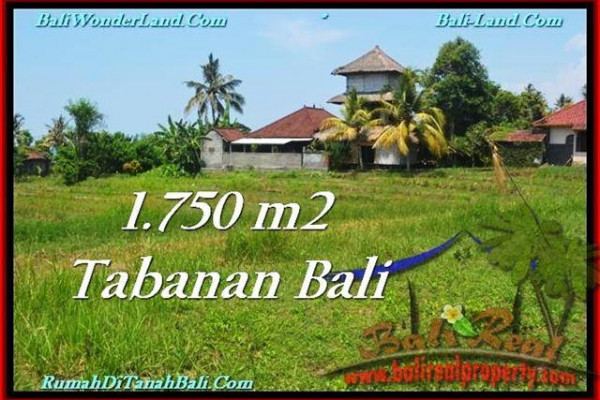 Affordable 1,750 m2 LAND IN TABANAN BALI FOR SALE TJTB231