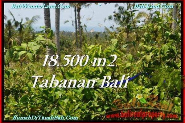 Beautiful TABANAN BALI 18,500 m2 LAND FOR SALE TJTB232