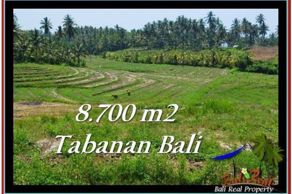 Affordable PROPERTY 8,700 m2 LAND SALE IN TABANAN BALI TJTB233