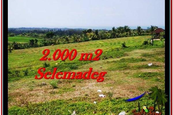 2,000 m2 LAND SALE IN TABANAN TJTB228