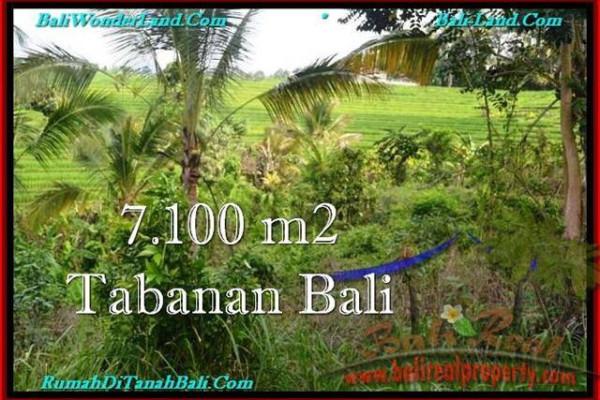 7,100 m2 LAND SALE IN TABANAN TJTB240