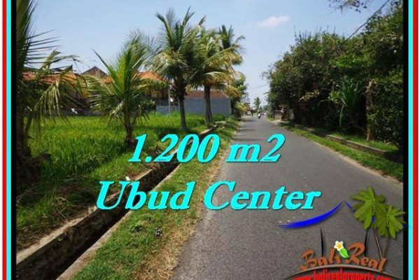 FOR SALE Beautiful 1,200 m2 LAND IN UBUD BALI TJUB525