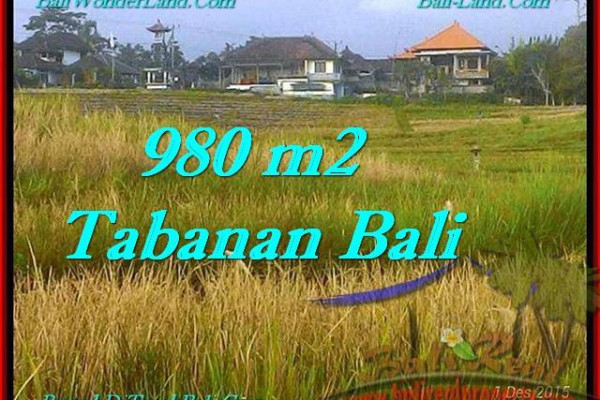 FOR SALE Affordable PROPERTY 980 m2 LAND IN TABANAN BALI TJTB244