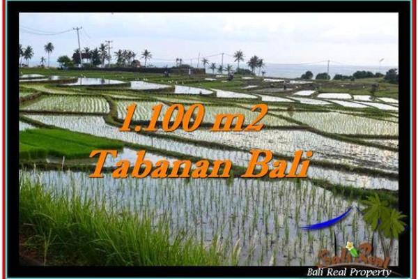 Affordable PROPERTY LAND IN TABANAN FOR SALE TJTB248