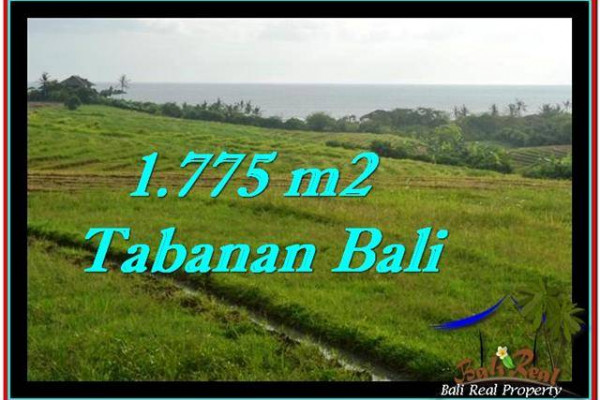 FOR SALE Beautiful PROPERTY LAND IN TABANAN TJTB251